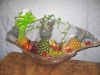 Barco Fruta